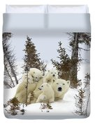 Polar Bear Ursus Maritimus Mother And Cubs Duvet Cover