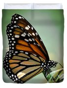Polka Dots And Wings Duvet Cover