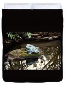 Pond Frog Statuette Duvet Cover