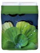 Pond Lettuce Duvet Cover