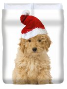 Poodle In Christmas Hat Duvet Cover