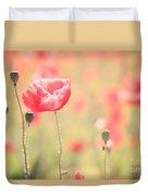 Poppy Field In Tuscany - Italy Duvet Cover