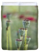Poppy Pods Duvet Cover
