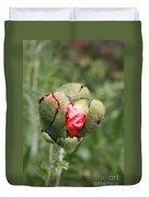 Poppybud Duvet Cover