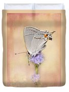 Portrait Of A Gray Hairstreak Duvet Cover