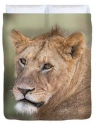 Portrait Of A Lioness, Panthera Leo Duvet Cover