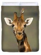 Portrait Of A Rothchilds Giraffe Duvet Cover