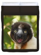portrait of a sifaka from Madagascar Duvet Cover