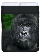 Portrait Of A Wild Mountain Gorilla Silverbackhighly Endangered Duvet Cover