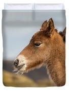 Portrait Of Newborn Foal Duvet Cover