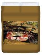 Posing Crab Duvet Cover