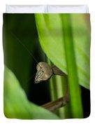 Praying Mantis Peekaboo Duvet Cover