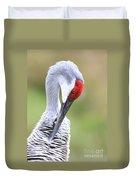 Preening Sandhill Crane Closeup Duvet Cover