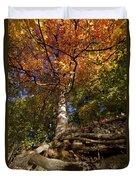 Preserve Trails In Fall Six Duvet Cover