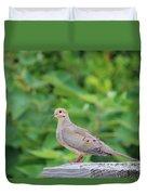 Pretty Dove Duvet Cover