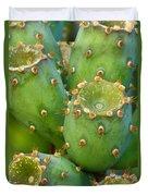 Prickly Pear Cactus 2am-105306 Duvet Cover