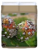 Prickly Pear With Cochineal Bugs Duvet Cover