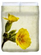 Primula Pacific Giant Yellow Duvet Cover by John Edwards