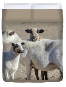 Professional Sheep Duvet Cover