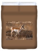Pronghorn Antelope 2 Duvet Cover