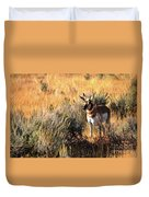 Pronghorn Buck Duvet Cover