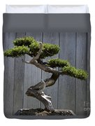 Prostrate Juniper Bonsai Tree Duvet Cover