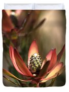 Protea  Duvet Cover