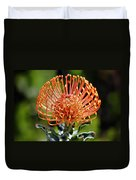 Protea - One Of The Oldest Flowers On Earth Duvet Cover