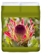Protea Sugarbush Duvet Cover