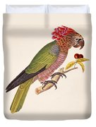 Psittacus Accipitrinus Duvet Cover by German School