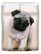 Pug Puppy Dog Duvet Cover