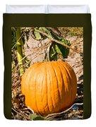 Pumpkin Growing In Pumpkin Field Duvet Cover