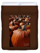 Pumpkin Harvest 1 Duvet Cover