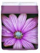 Purple African Daisy Duvet Cover