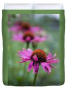 Purple Coneflowers In A Row Duvet Cover
