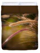 Purple Fountain Grass Ornamental Decorative Foxtail Home Decor Print Duvet Cover