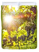 Purple Grapes In Sunshine Duvet Cover