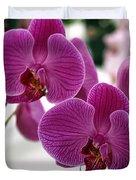 Royal Orchids  Duvet Cover