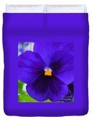 Purple Pansy Closeup Duvet Cover