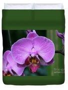 Purple Phalaenopsis Orchids Duvet Cover