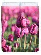 Purple Tulip Standouts Duvet Cover
