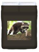 Raccoon Baby Duvet Cover