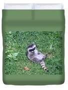 Raccoon Plays In The Grass Duvet Cover
