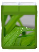 Rain Beads IIi Duvet Cover