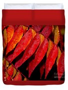 Rain Fall Color Duvet Cover