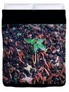 Rain Forest Seedling, Indonesia Duvet Cover