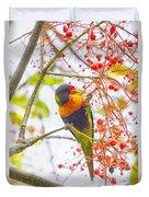Rainbow Lorikeet In Flame Tree Duvet Cover