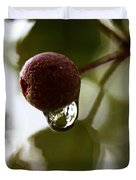 Raindrop Reflection 1 Duvet Cover
