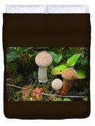 Rainforest 'shrooms Duvet Cover