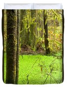 Rainforest Wetland Wildernis Of West Coast Bc Duvet Cover